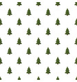 spruce with cones pattern vector image vector image