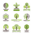 tree logotypes eco green symbols wood stylized vector image vector image