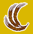 wheat branch icon hand drawn style vector image