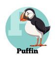 abc cartoon puffin vector image