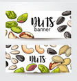 banners with nuts seeds and place for text vector image vector image
