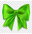 big green bow vector image vector image