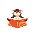 cute toon penguin in glasses reading a book vector image vector image