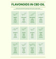 flavonoids in cbd oil with structural formulas vector image vector image