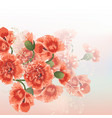 floral background with red poppy flowers vector image vector image