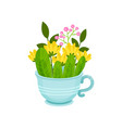 fresh spring flowers and leaves in blue cup vector image vector image