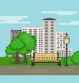 public park on city landscape background in flat vector image vector image