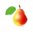 realistic ripe pear vector image vector image