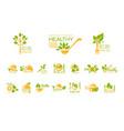 set healthy food and drinks logos natural vector image