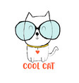 cool cat print design with slogan vector image vector image