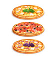 different pizza set vector image vector image