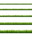 green grass big set vector image vector image