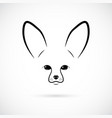 muzzle of cute fennec on white background line vector image vector image