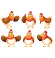 Six fat chickens vector image vector image