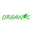 vegan food diet icon vector image
