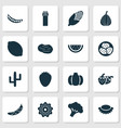 vegetable icons set with lychees watermelon vector image