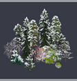 group coniferous trees bushes and rocks vector image