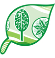 Leaf tree green vector image vector image