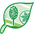 Leaf tree green vector image