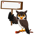 owl cartoon holding blank board vector image vector image