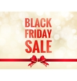 Black friday sale background EPS 10 vector image