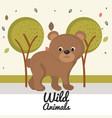 cartoon bear wild animal with falling leaves vector image