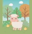 cute sheep animal farm character vector image