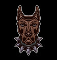 dog head in spiked collar front view vector image