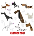 Dogs cartoon set vector image vector image