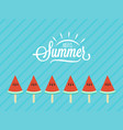 hello summer card watermelon slice fruit vector image