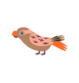 parrot bird with colored feathers and wings vector image vector image