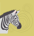 portrait of zebra on a colored background vector image