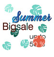 summer big sale design vector image vector image