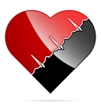The heart and cardiogram vector image vector image