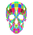 abstract polygonal multicolor skull on a vector image