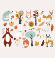 cute autumn woodland animals and floral forest vector image