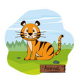 cute tiger in forest cartoon vector image vector image
