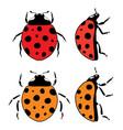 ladybird flat symbols vector image