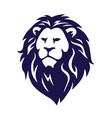 wild lion icon logo vector image