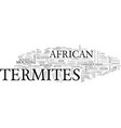 african termites text word cloud concept vector image vector image
