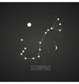Astrology sign Scorpius on chalkboard background vector image vector image