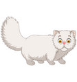 cartoon persian cat on white background vector image vector image