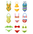 flat set of female swimsuits trendy women vector image