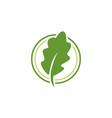 green leaf leaves logo vector image vector image