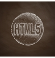 HTML5 icon vector image vector image