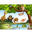 Many wild animals in the park vector image vector image