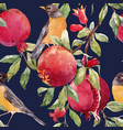 pomegranate fruit pattern vector image