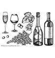 set hand drawn black and white grapes vector image