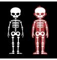 Skeletons Human Bones Set Cartoon Style vector image