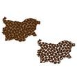 bulgaria - map of coffee bean vector image vector image